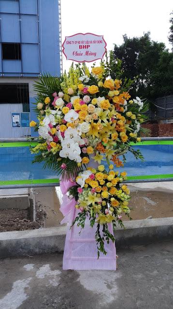 Hoa khai trương rực rỡ nắng vàng