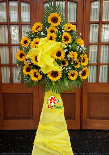 Hoa khai trương - rực rõ ánh dưng tại Điện hoa Lily