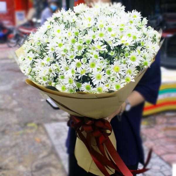 Bó hoa - Cúc Họa Mi - Điện hoa Lily